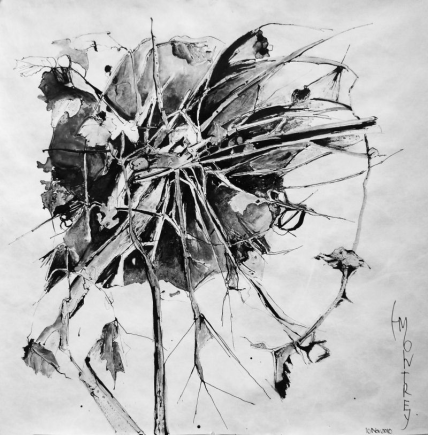 NATURE SCRIPTURES Series: Memory of Ikebana #2, Ink on Tyvek, 79x79cm