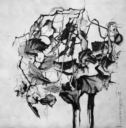 NATURE SCRIPTURES Series: Memory of Ikebana #3, Ink on Tyvek, 79x79cm